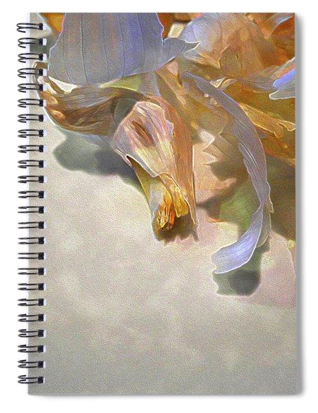 Garlic Skin Gossamer Spiral Notebook