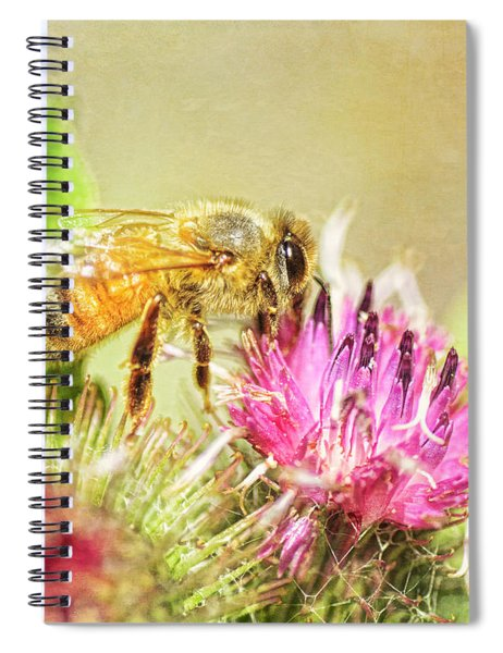 Gathering Pollen Spiral Notebook