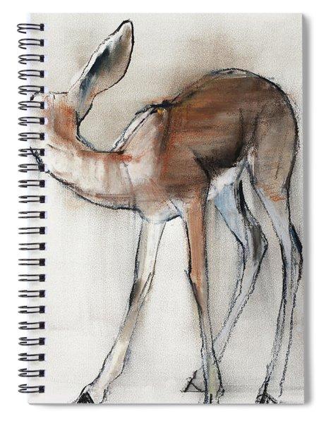 Gazelle Fawn  Arabian Gazelle Spiral Notebook