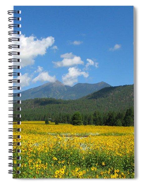 Gazing Serene Spiral Notebook