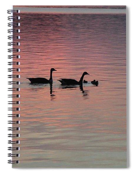 Geese And Their Babies Spiral Notebook