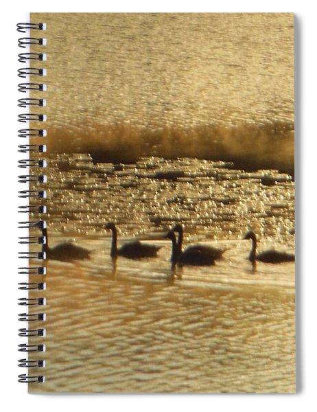 Geese On Golden Pond Spiral Notebook