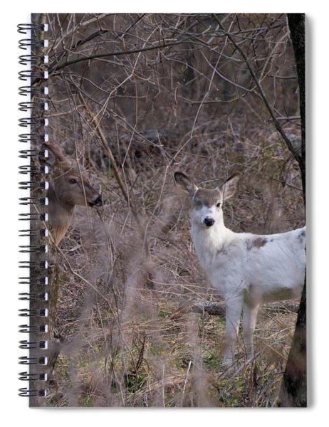 Genetic Mutant Deer Spiral Notebook
