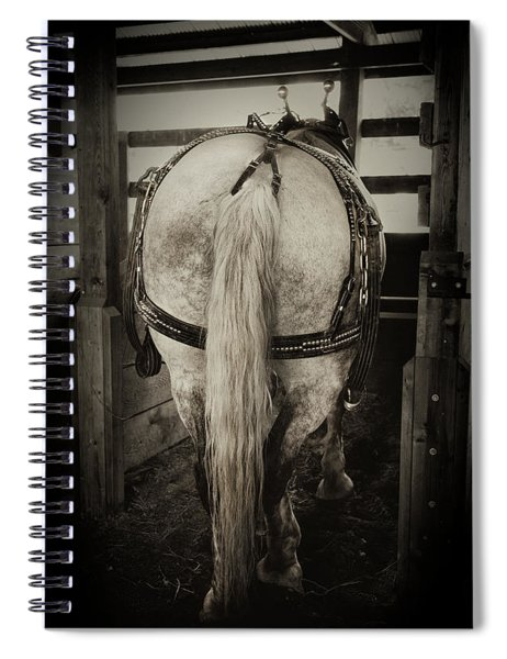 Gentle Giant Draft Horse Spiral Notebook