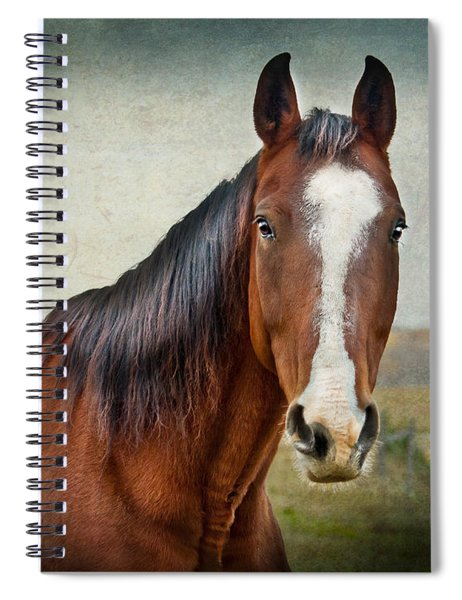 Gentle  Spiral Notebook