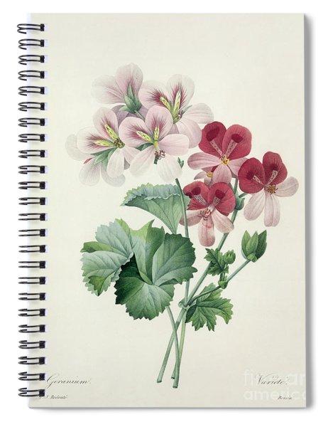 Geranium Variety Spiral Notebook