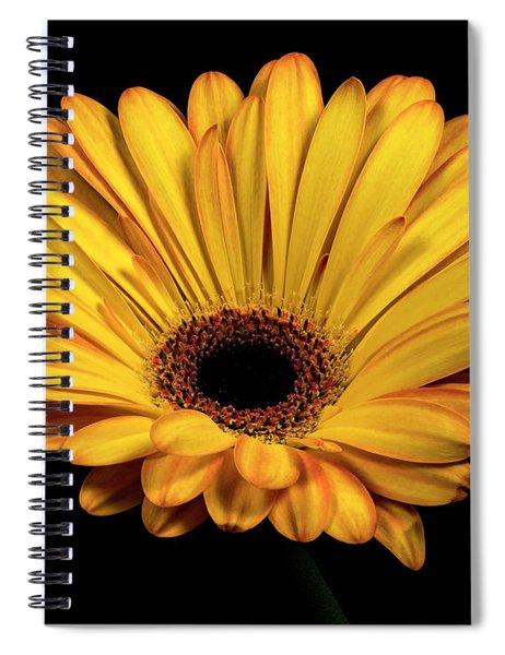 Gerber Daisy Spiral Notebook