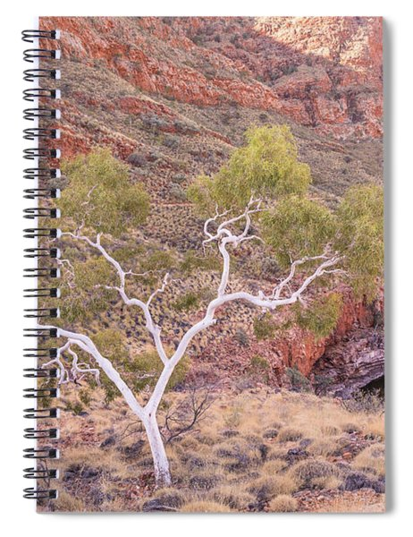 Ghost Gum Spiral Notebook
