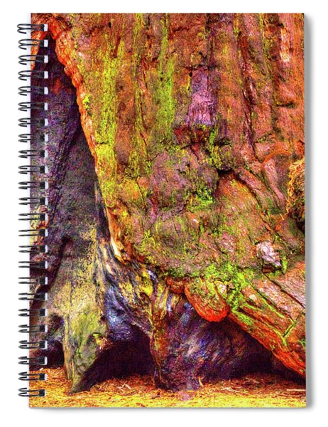Giant Sequoia Base With Fire Scar Spiral Notebook