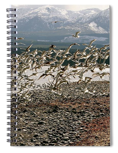 Gift From The Sea Spiral Notebook