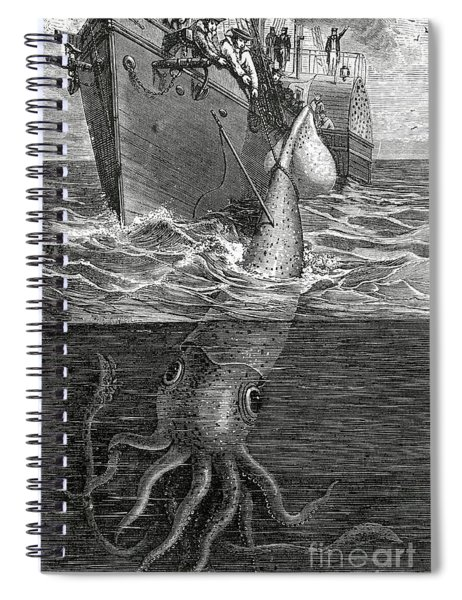 Gigantic Cuttle Fish Spiral Notebook