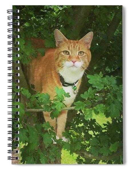 Hawthorn Hideaway Spiral Notebook