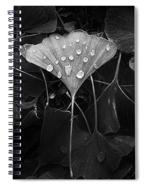 Ginkgo Spiral Notebook