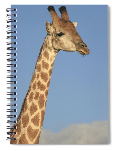 Giraffe Portrait Spiral Notebook