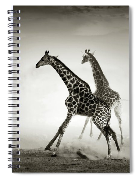 Giraffes Fleeing Spiral Notebook