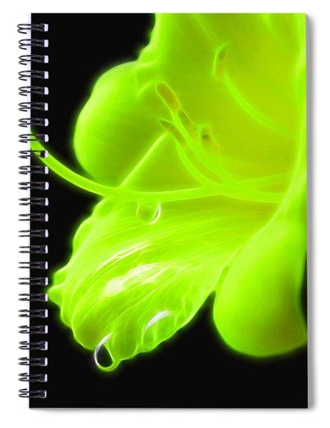 Gleaming Spiral Notebook