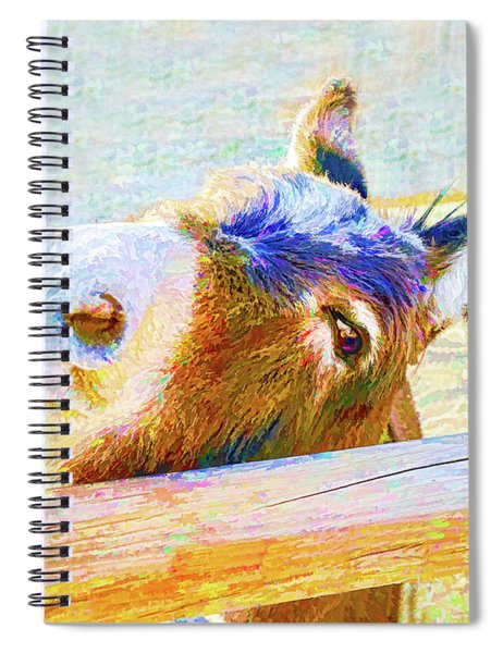 Go Jack Spiral Notebook