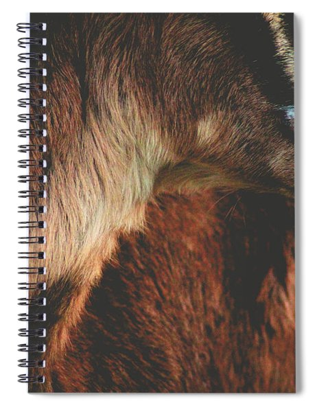 Goat Love Spiral Notebook