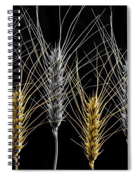 Gold And Silver Wheat Spiral Notebook