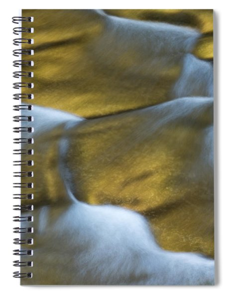 Gold Scales Spiral Notebook