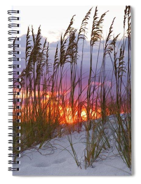 Golden Amber Spiral Notebook