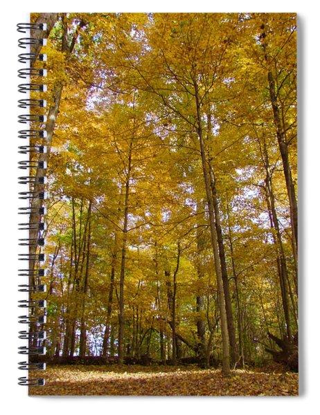 Golden Canopy Spiral Notebook