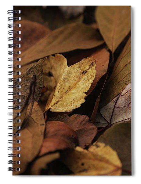 Golden Crunch Spiral Notebook