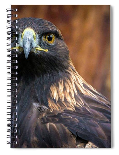 Golden Eagle 1 Spiral Notebook