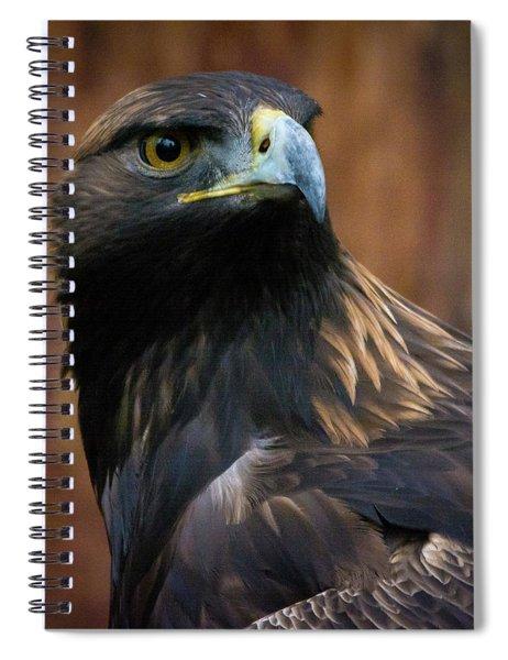 Golden Eagle 4 Spiral Notebook
