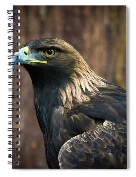 Golden Eagle 5 Spiral Notebook
