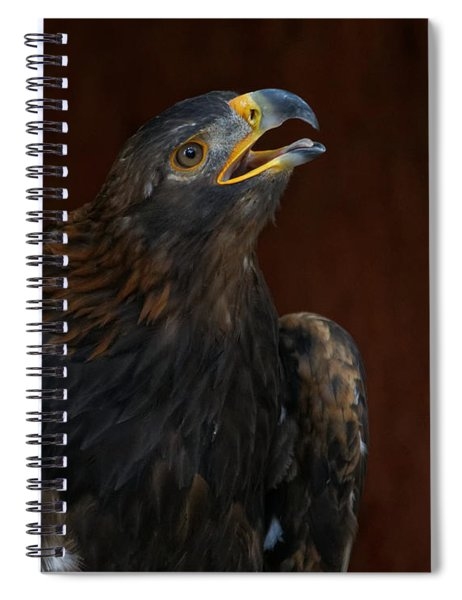 Golden Eagle Calling To The Sun Spiral Notebook