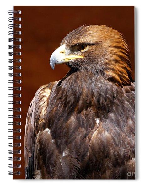 Golden Eagle - Royalty Spiral Notebook