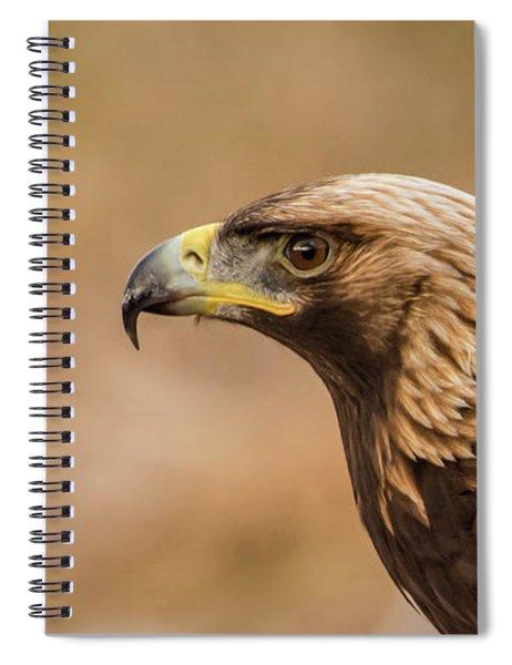 Golden Eagle's Portrait Spiral Notebook
