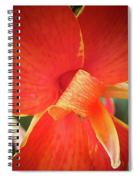 Golden Edge Spiral Notebook