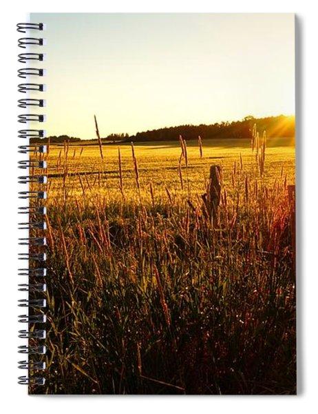Golden Fields Spiral Notebook