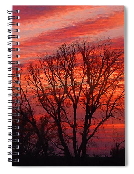 Golden Pink Sunset With Trees Spiral Notebook
