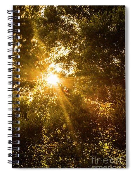 Golden Treetops Spiral Notebook