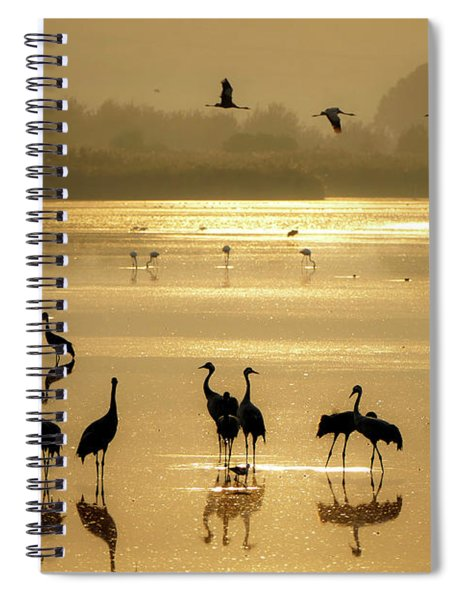Spiral Notebook featuring the photograph Good Morning Chula Lake by Arik Baltinester