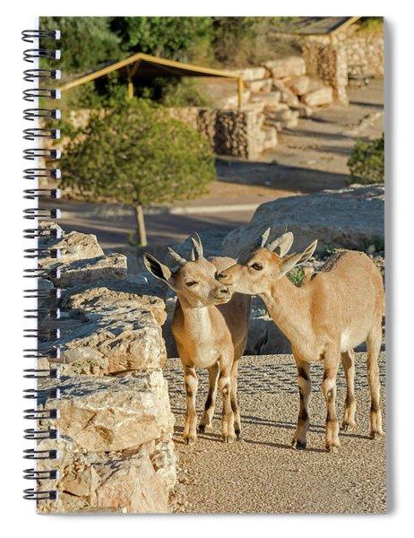 Spiral Notebook featuring the photograph Good Morning Kiss 02 by Arik Baltinester