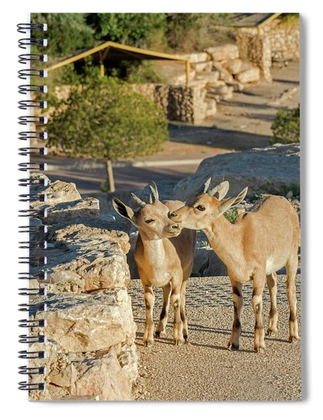 Good Morning Kiss 02 Spiral Notebook