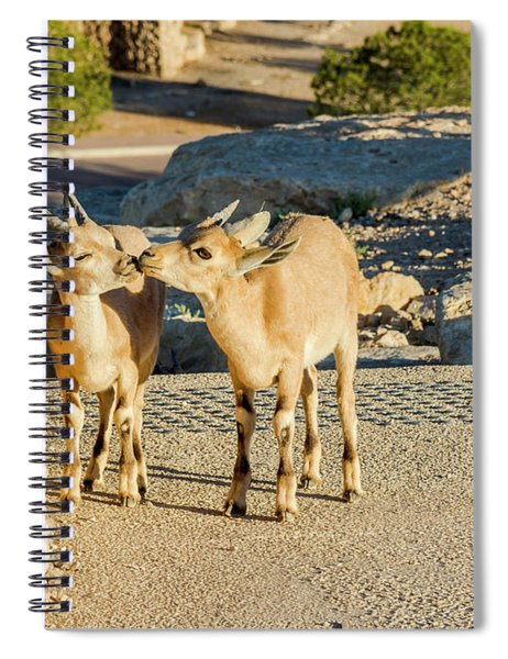 Good Morning Kiss Spiral Notebook