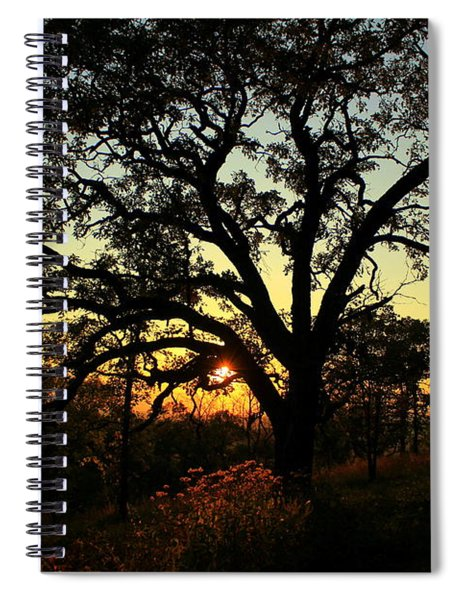 Good Night Tree Spiral Notebook