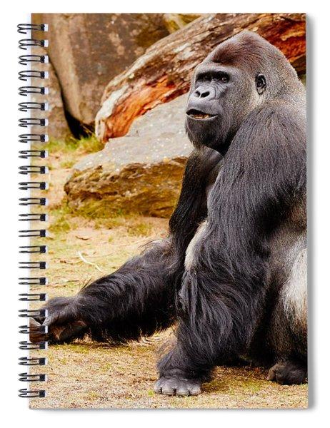 Gorilla Sitting Upright Spiral Notebook