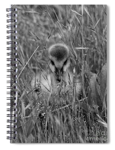 Gosling Serenity Spiral Notebook
