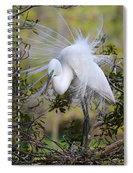 Grace In Nature Spiral Notebook