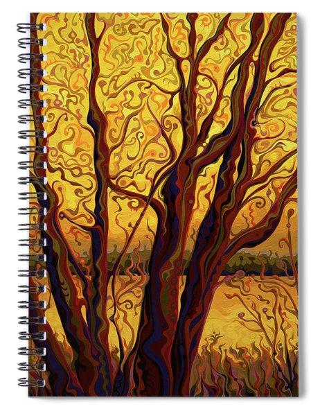 Gracious Golden Passage Gala Spiral Notebook