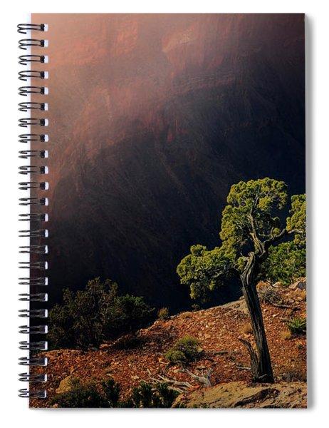 Grand Canyon Juniper Spiral Notebook
