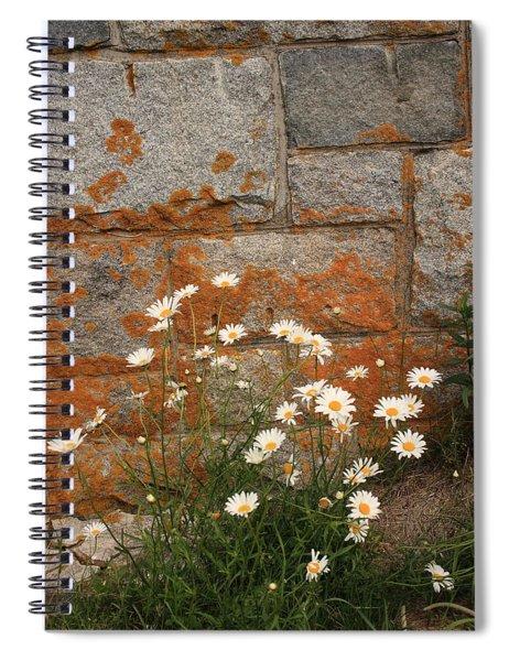 Granite Daisies Spiral Notebook