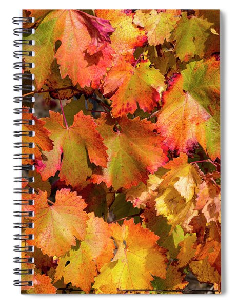 Grape Leaf Spiral Notebook