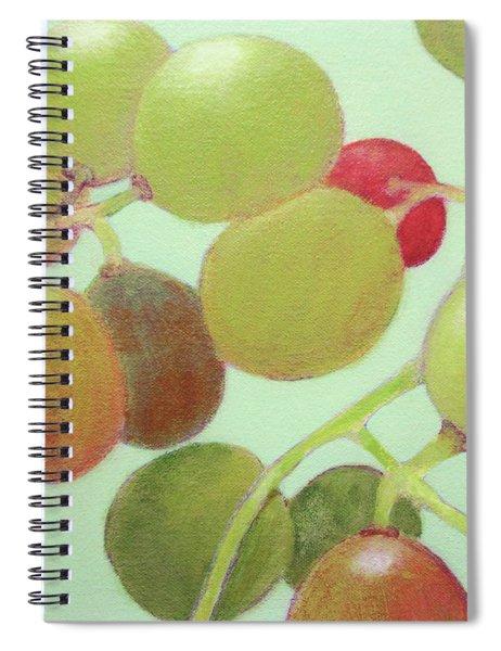 Grapes #6 Spiral Notebook